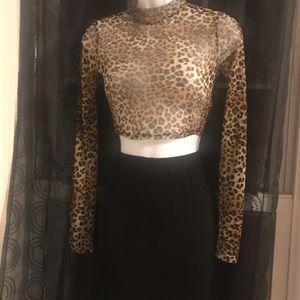 Sheer Top and Skirt Set